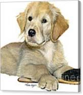 Golden Retriever Puppy Canvas Print