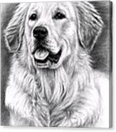 Golden Retriever Spence Canvas Print