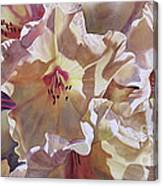 Golden Rhododendronfull Canvas Print
