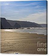 Golden Sands Canvas Print