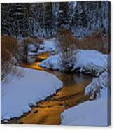 Golden Silence Canvas Print