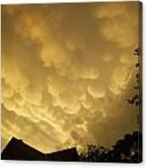 Golden Sky's Canvas Print