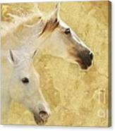 Golden Steeds Canvas Print