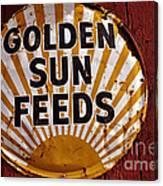 Golden Sun Feeds Canvas Print