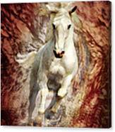 Golden Thunder Canvas Print