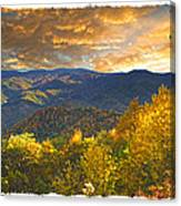 Golden Tipped Smokey's  Canvas Print