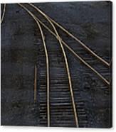 Golden Tracks Canvas Print