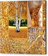 Golden Weeping Birch Tree Collage Canvas Print