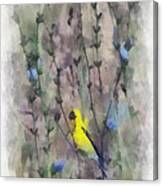 Goldfinch In Wildflowers Canvas Print