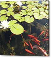 Goldfish And Water Lily 1 Canvas Print