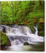 Golitha Falls And River Fowey Canvas Print