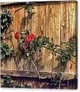 Good Fences Canvas Print