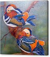 Good Luck Mandarins Canvas Print