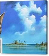 Good Morning Florida Canvas Print