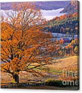 Good Morning Vermont Canvas Print
