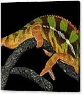 Good Night Chameleon Canvas Print