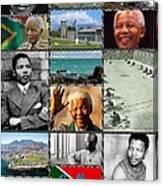 Goodbye Madiba Canvas Print