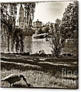 Goose In Central Park Nyc Canvas Print