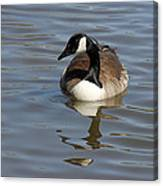 Goose Reflecting  Canvas Print