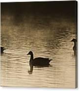Goose Silhouette Canvas Print