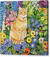Gordon S Cat Canvas Print