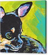 Got Chi? Canvas Print