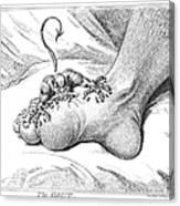 Gout, 1799 Canvas Print