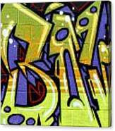 Graffiti 22 Canvas Print