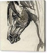 Grafik Polish Arabian Horse Ink Drawing Canvas Print
