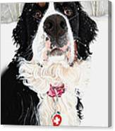 Grand Berner Girl Canvas Print