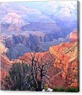 Grand Canyon 67 Canvas Print