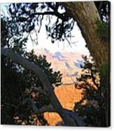 Grand Canyon 74 Canvas Print