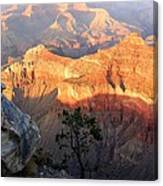 Grand Canyon 83 Canvas Print
