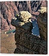Grand Canyon.  Az Canvas Print