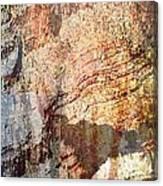 Grand Canyon Color Study Canvas Print