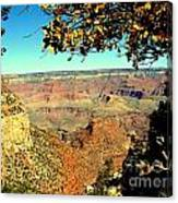 Grand Canyon Framed By Nature Canvas Print
