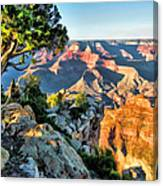 Grand Canyon Ledge Canvas Print