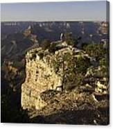 Grand Canyon Outlook Canvas Print
