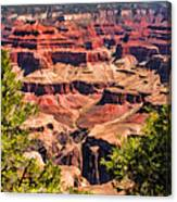 Grand Canyon Valley Canvas Print