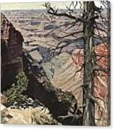 Grand Canyon View Weathered Tree Right Side  Canvas Print