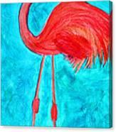 Grand Flamingo Canvas Print