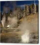 Grand Geyser Group Canvas Print