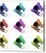 Grand Kitty Cuteness 3 Pop Art 9 Canvas Print