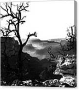 Grand Nature Canvas Print