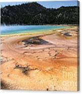 Grand Prismatic Geyser Canvas Print