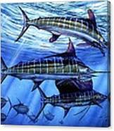 Grand Slam Lure And Tuna Canvas Print