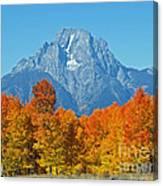Grand Teton National Park 2 Canvas Print