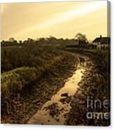 Grand Western Canal Nr Halberton  Canvas Print