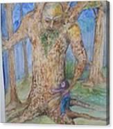 Grandfather Tree Canvas Print