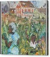 Grandma Higgins Corn Harvest Canvas Print